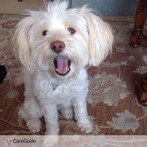 Pet Care Job Devan B's Profile Picture