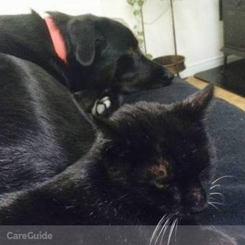 Pet Care Provider Martine L's Profile Picture