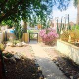 House Sitter Job in Phoenix