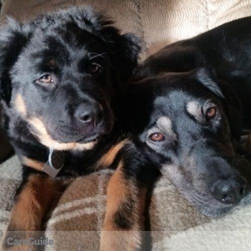 Pet Care Provider Tori B's Profile Picture