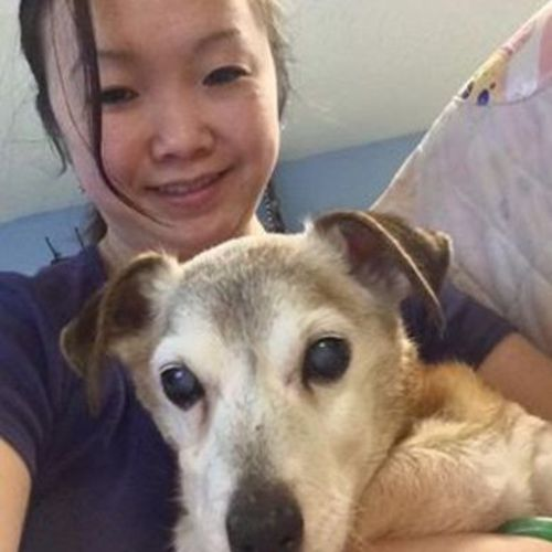 Pet Care Provider Jenny Nguyen's Profile Picture