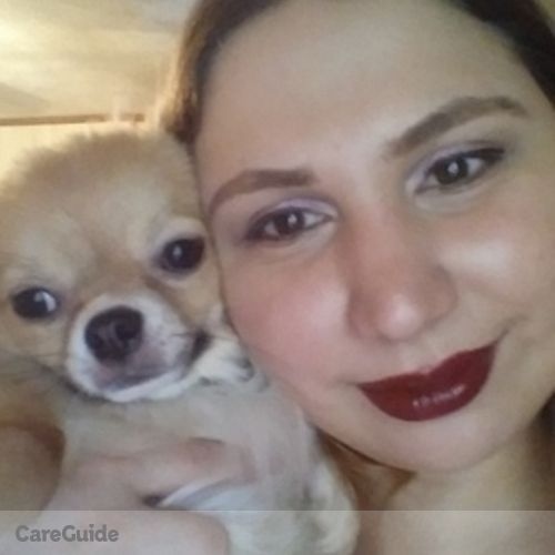 Pet Care Provider Anne Arroyo's Profile Picture