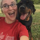 Experienced Dog Walker and Pet Sitter