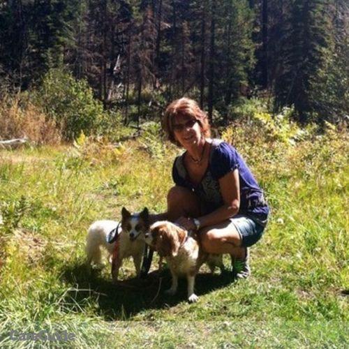 Pet Care Provider Teri Benesch's Profile Picture