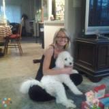 Dog Walker, Pet Sitter in Port Hueneme