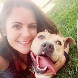 Dog Walker, Pet Sitter in Saint Louis