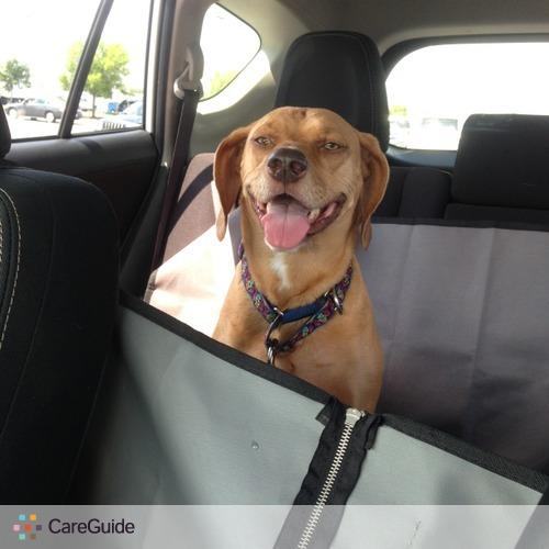 Pet Care Job Melanie Villano's Profile Picture