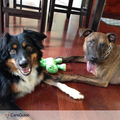 Pet Care Provider Aleesha Gibson's Profile Picture