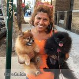 Dog Walker, Pet Sitter in Ridgewood