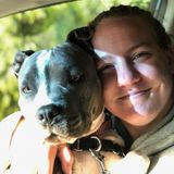 Loving Dog walker in Pittsburg