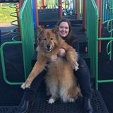 Dog Walker, Pet Sitter in North Bend