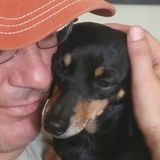 I have, over the last 30+ years, trained and found respective homes for animals of, almost, all furry kinds with zero payback