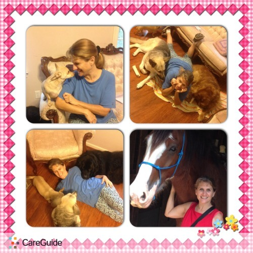 Pet Care Provider Mary Beth Soto's Profile Picture
