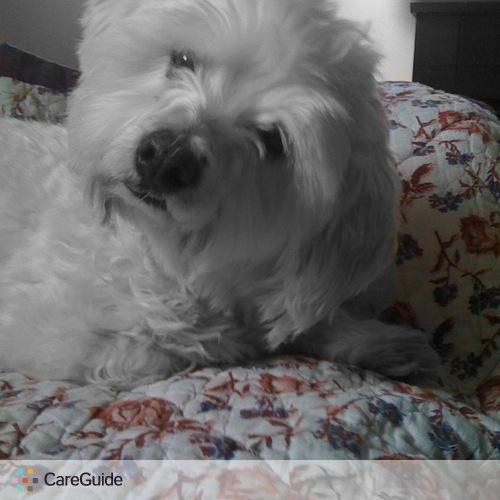 Pet Care Provider LuLu's P's Profile Picture