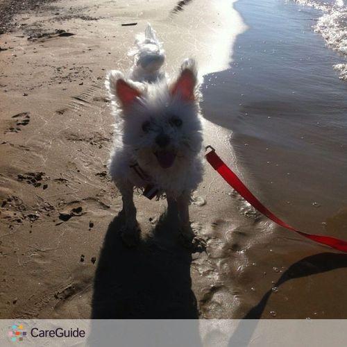 Pet Care Provider Kaitlin Rex's Profile Picture