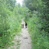 Trail Talez