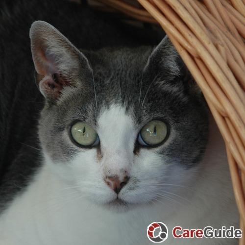 Pet Care Provider Mary M's Profile Picture