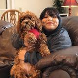 For Hire: Honest Dog Walker in Waynesville, North Carolina