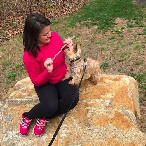 Pet Care Provider Adriana Valle's Profile Picture