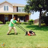Experienced professional landscaper schedule an appointment today!
