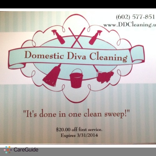 Housekeeper Provider Domestic Diva Cleaning's Profile Picture