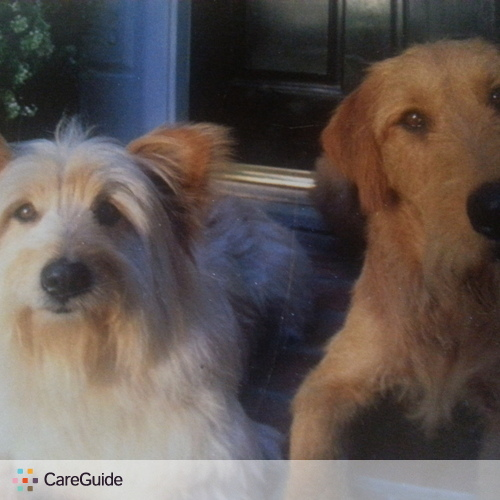Pet Care Provider Shaniah Carlton's Profile Picture