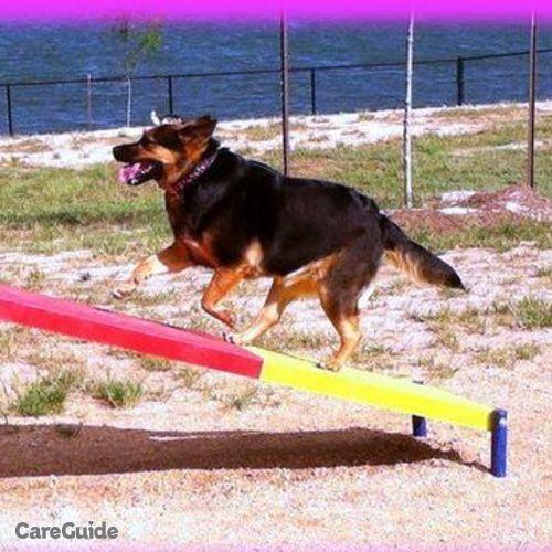 Pet Care Provider Ashley S's Profile Picture