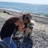 Pet Care Provider in Ajax, Ontario