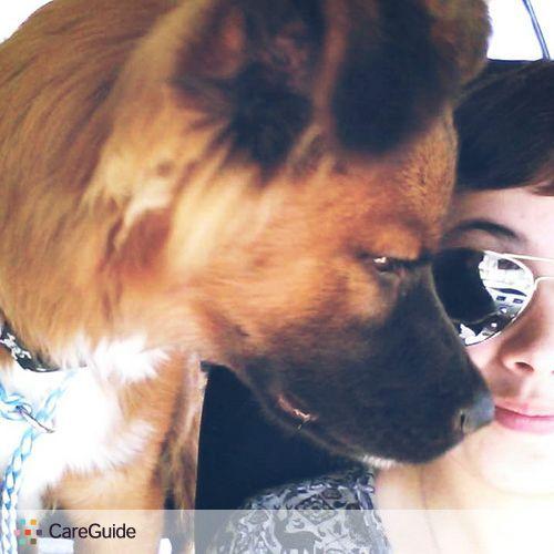Pet Care Provider Shelby M's Profile Picture