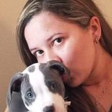 New Port Richey Pet Care Provider Searching for Work