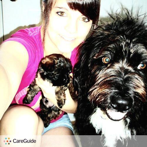 Pet Care Provider Amy Bryan's Profile Picture