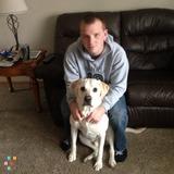 Pet Sitter in Goodyear
