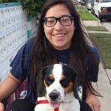 Honest Dog Sitter in Montebello