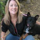 Dog Walker, Pet Sitter in Hillsboro