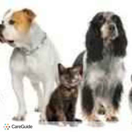 Pet Care Provider Chris W's Profile Picture
