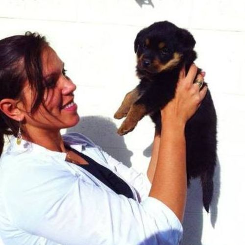 Pet Care Provider Tammy W Gallery Image 2