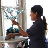 Housekeeper, House Sitter in Ventura