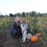 Animal caregiver in and around Vonore, TN.