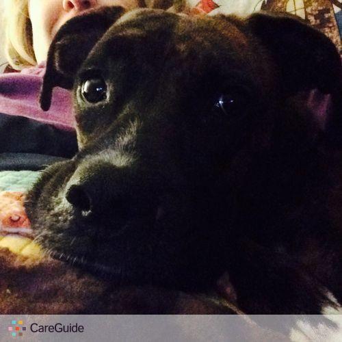 Pet Care Provider Ashlee R's Profile Picture