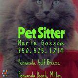 Dog Walker, Pet Sitter in Pensacola