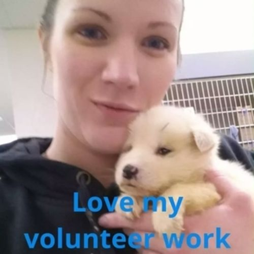 Pet Care Provider Lindsay M's Profile Picture