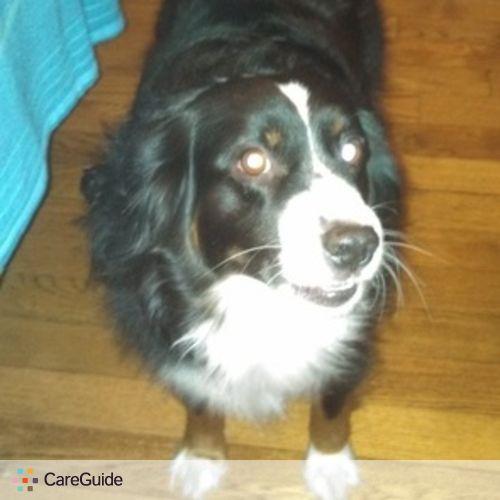 Pet Care Job Vicky E's Profile Picture