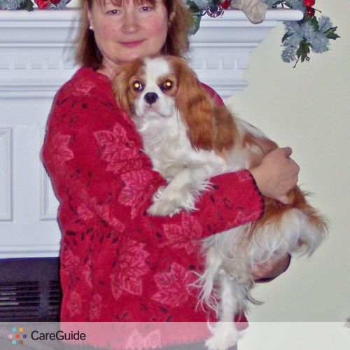 Pet Care Provider Susan Lucas's Profile Picture