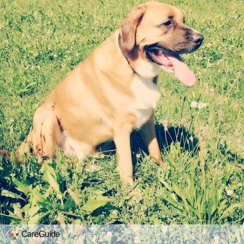 Pet Care Provider Dakota W's Profile Picture
