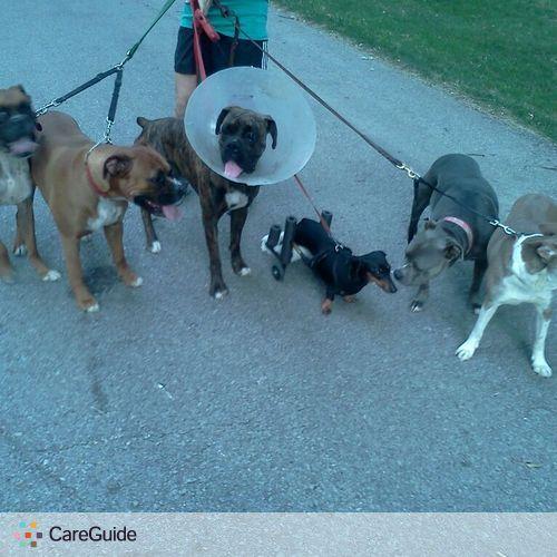 Pet Care Provider Ali T's Profile Picture