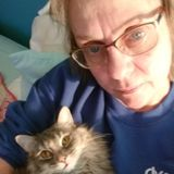 Pet Sitter in Winnebago to pamper your furbabies