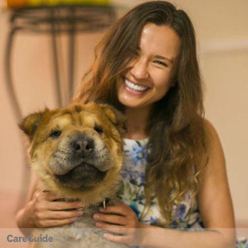 Pet Care Provider Palina Soldak's Profile Picture