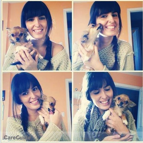 Pet Care Provider Amanda Bucz's Profile Picture