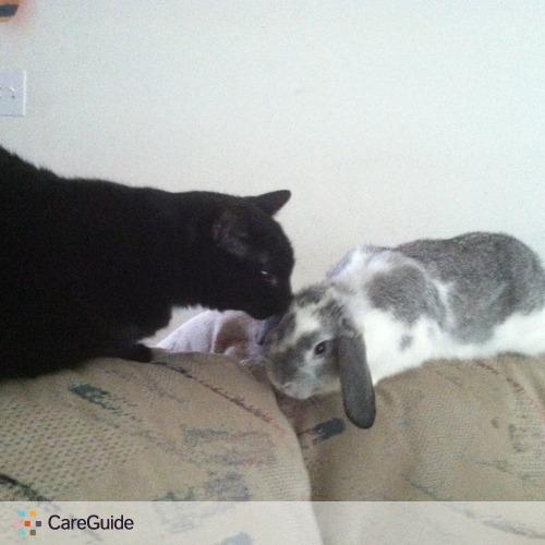 Pet Care Provider Christine Moore's Profile Picture