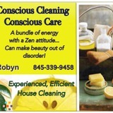 House Cleaning Company, House Sitter in Kingston